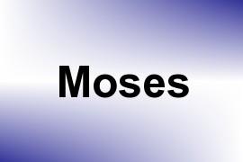 Moses name image