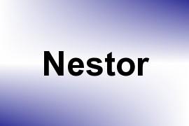 Nestor name image
