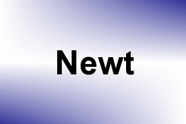 Newt name image