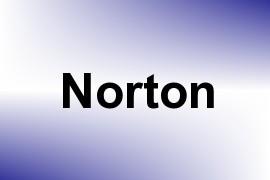 Norton name image