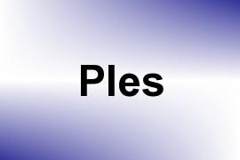 Ples name image