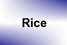 Rice name image