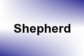 Shepherd name image