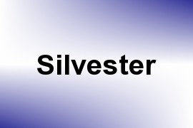 Silvester name image