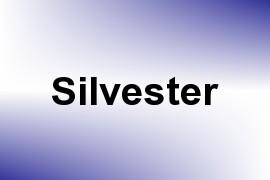 Silvester name image