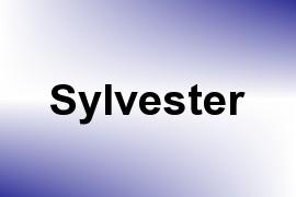 Sylvester name image