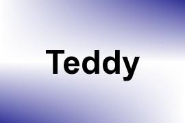 Teddy name image