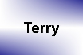 Terry name image