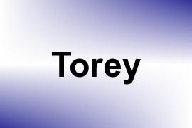 Torey name image