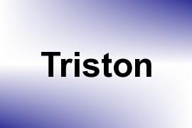 Triston name image
