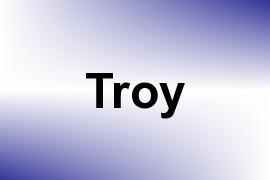 Troy name image